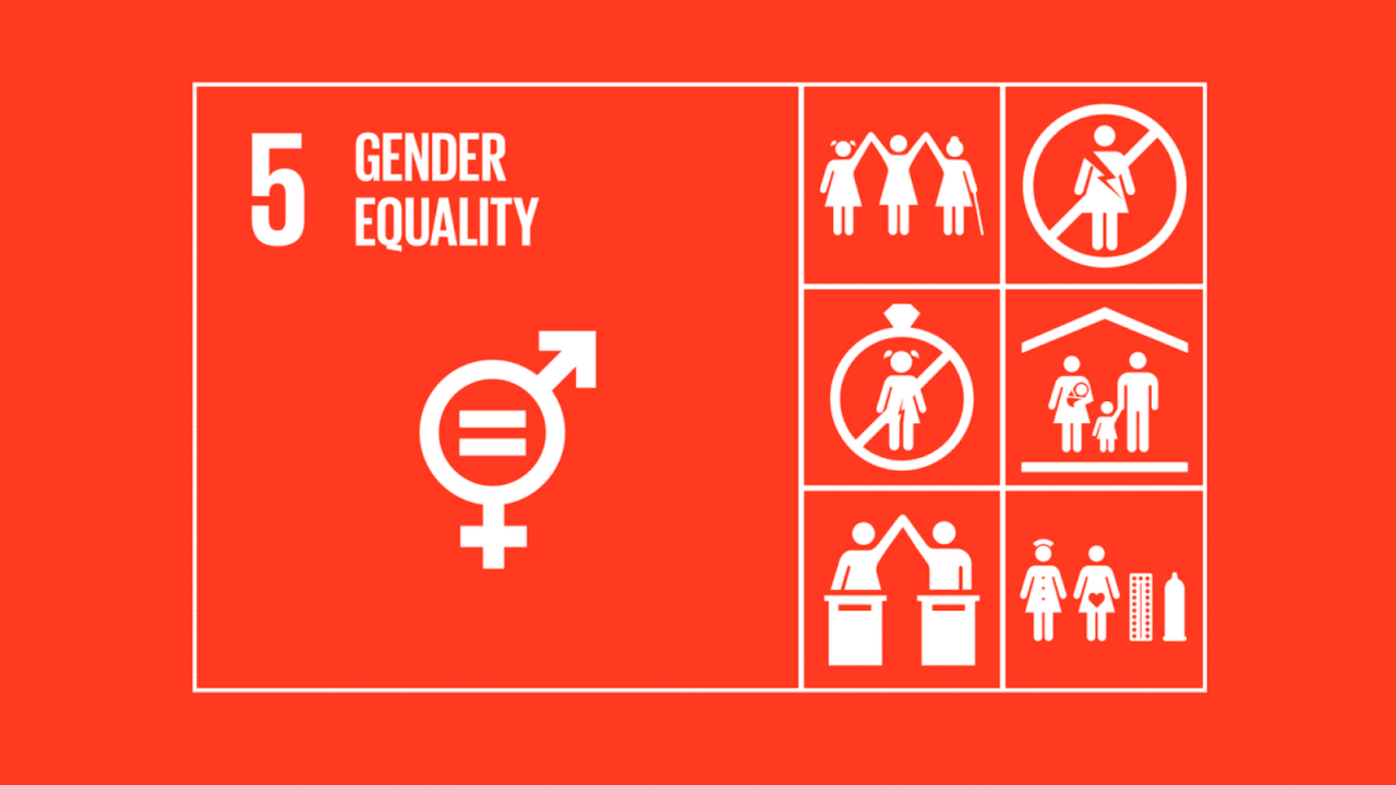 icons of the sdg 5 on gender equality